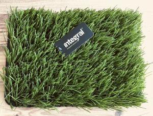 Artificial Grass Court Maintenance