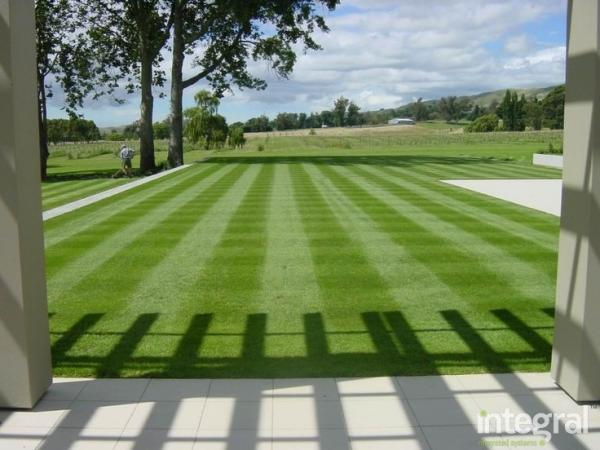 Natural grass carpets