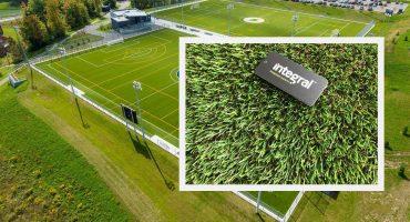 Cheap artificial grass