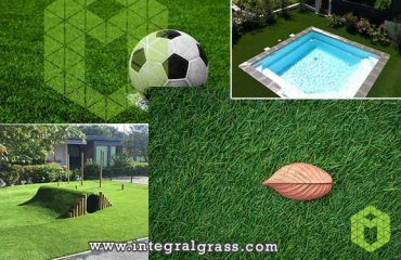 Natural Grass Diseases, and Artificial Grass Use Areas