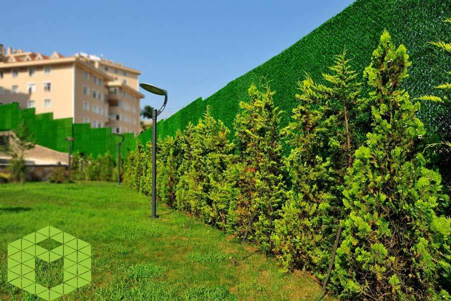 Surround Your Garden with Wallgrass!