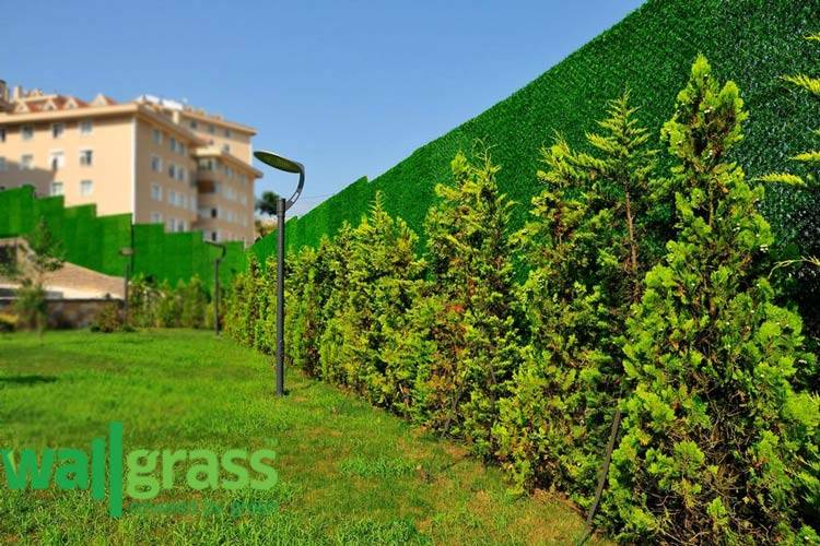Are Wallgrass and Artificial Grass Used in Gardens