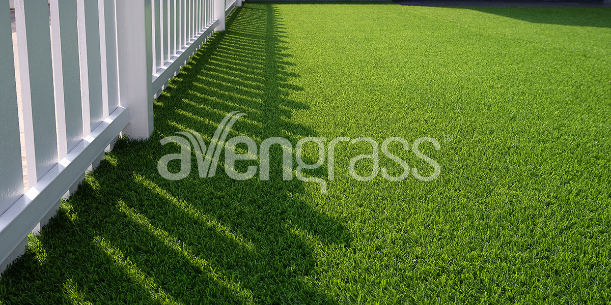 траванная трава